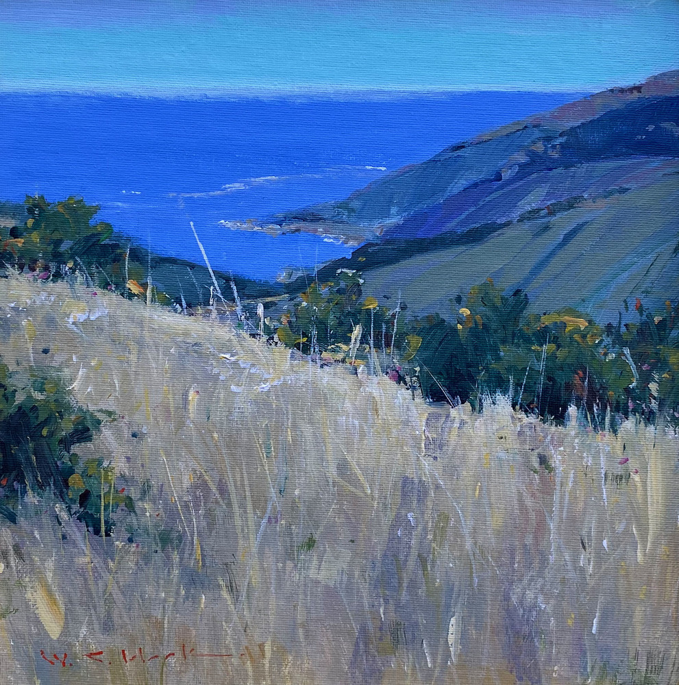 Wild grasses grow on a hill high above the Pacific Ocean in Big Sur, CA.