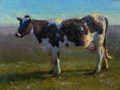 Side portrait of a brown and white cow in sunlight.