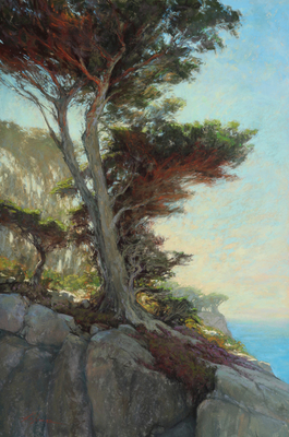 A majestic cypress tree hangs on a cliff at Point Lobos near Carmel,California