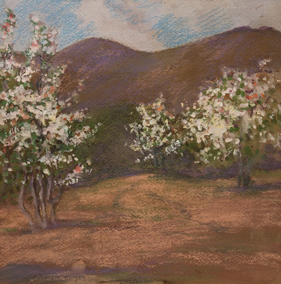 An pastel of blossoming apple trees in Carmel Valley, California, with golden foothills in the distance.  Back in the days when there were numerous orchards and dairy farms in Carmel Valley.