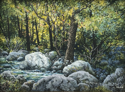 A detailed, realistic riparian landscape of backlit trees along a mountain stream with large boulders.