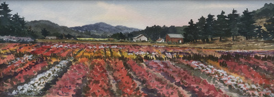 Title: Goldsmith Seed Farm , Date: c. 1997 , Size: 6 x 14.5 , Medium: Watercolor , Price: $2,500