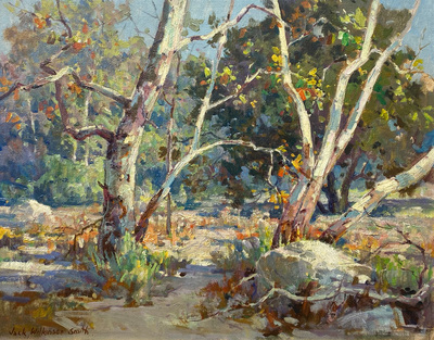 Colorful late Autumn sycamore trees along a dry creekbed on a sunny say in Southern California.