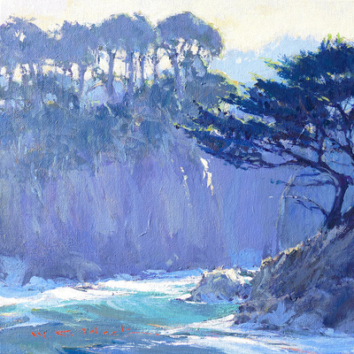A combination of sunlight and shadows on the waves and steep cliffs of a cove at Point Lobas near Carmel, California.  Cypress trees line the tops of the cliffs.